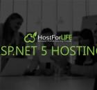 ASP.NET 5 Hosting - UK